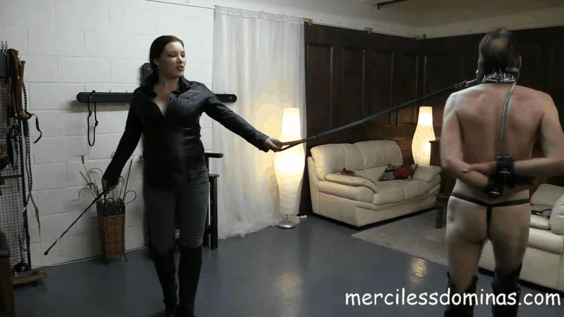 Merciless Pony Training by Goddess Sophia